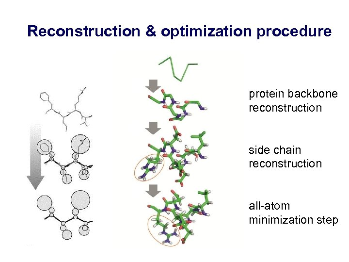 Reconstruction & optimization procedure protein backbone reconstruction side chain reconstruction all-atom minimization step