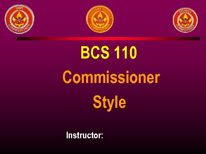 BCS 110 Commissioner Style Instructor: