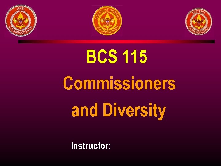 BCS 115 Commissioners and Diversity Instructor: