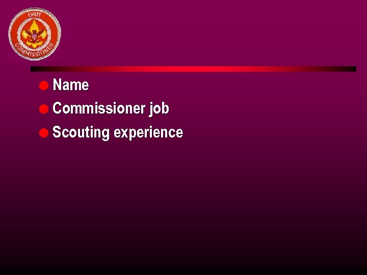 l Name l Commissioner job l Scouting experience