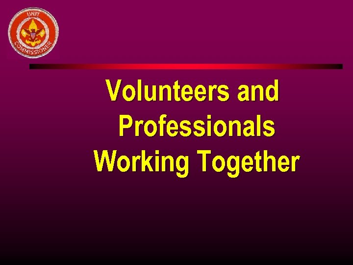 Volunteers and Professionals Working Together