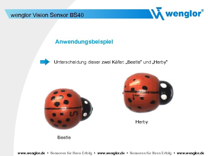 """wenglor Vision Sensor BS 40 Anwendungsbeispiel Unterscheidung dieser zwei Käfer: """"Beetle"""" und """"Herby"""" Herby"""