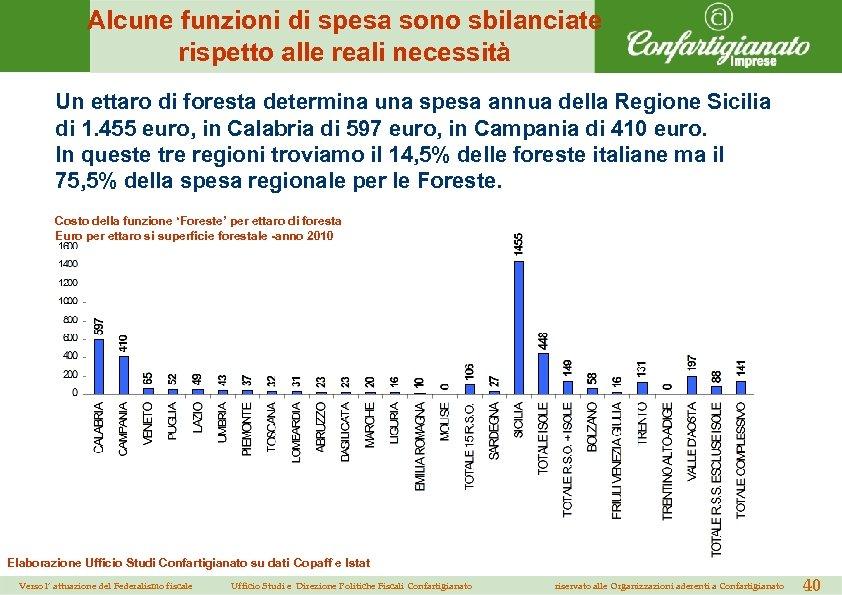 Alcune funzioni di spesa sono sbilanciate rispetto alle reali necessità Un ettaro di foresta