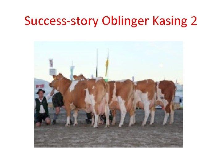 Success-story Oblinger Kasing 2