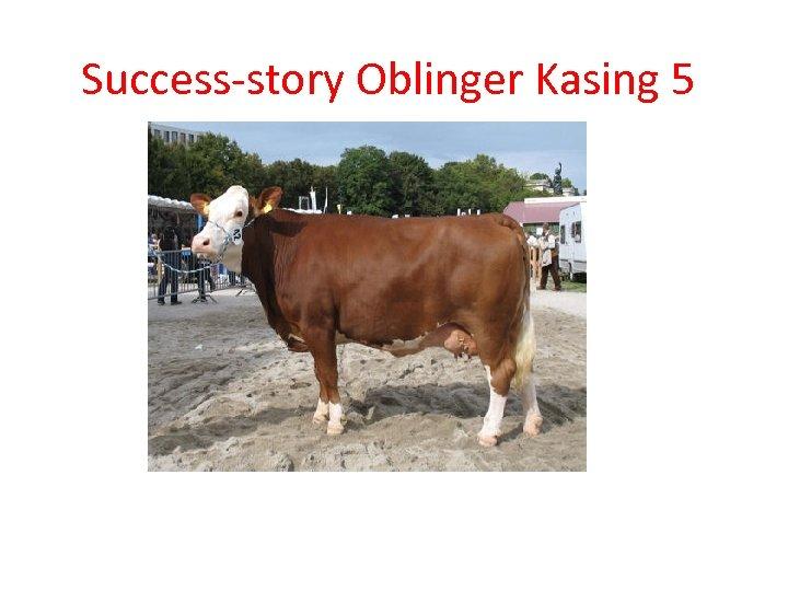 Success-story Oblinger Kasing 5