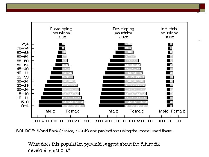 What does this population pyramid suggest about the future for developing nations?