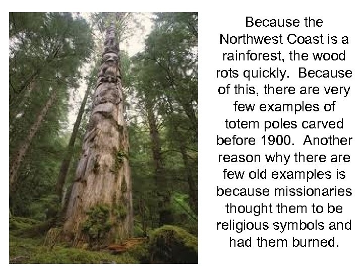 Because the Northwest Coast is a rainforest, the wood rots quickly. Because of this,
