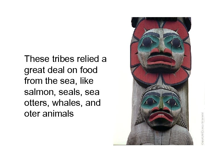 These tribes relied a great deal on food from the sea, like salmon, seals,