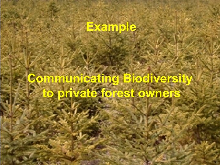 Example Communicating Biodiversity to private forest owners © Frits Hesselink, 2006 – page 15
