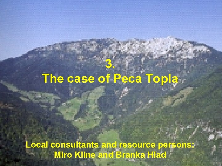 3. The case of Peca Topla Local consultants and resource persons: Miro Kline. Hesselink,