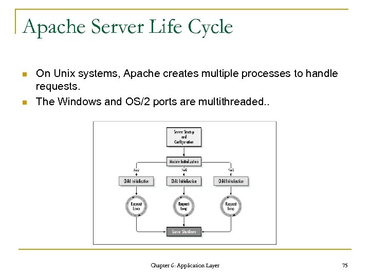 Apache Server Life Cycle n n On Unix systems, Apache creates multiple processes to