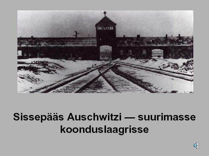 Sissepääs Auschwitzi — suurimasse koonduslaagrisse