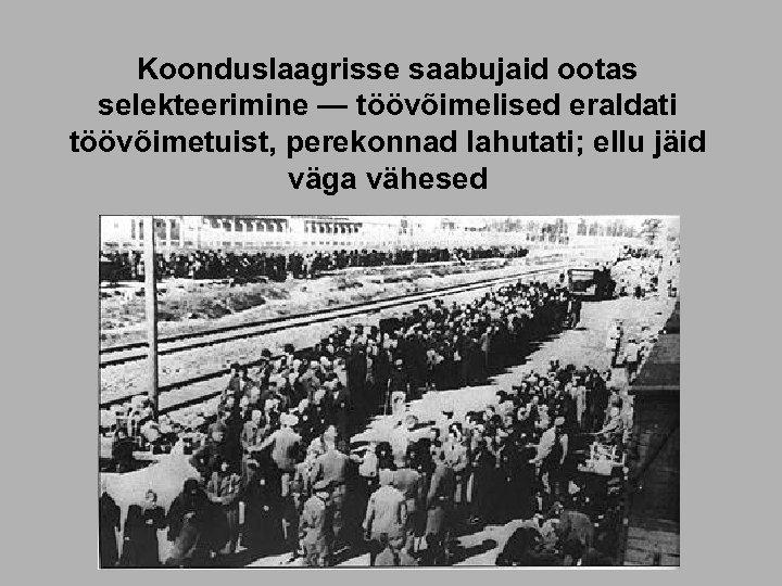 Koonduslaagrisse saabujaid ootas selekteerimine — töövõimelised eraldati töövõimetuist, perekonnad lahutati; ellu jäid väga vähesed