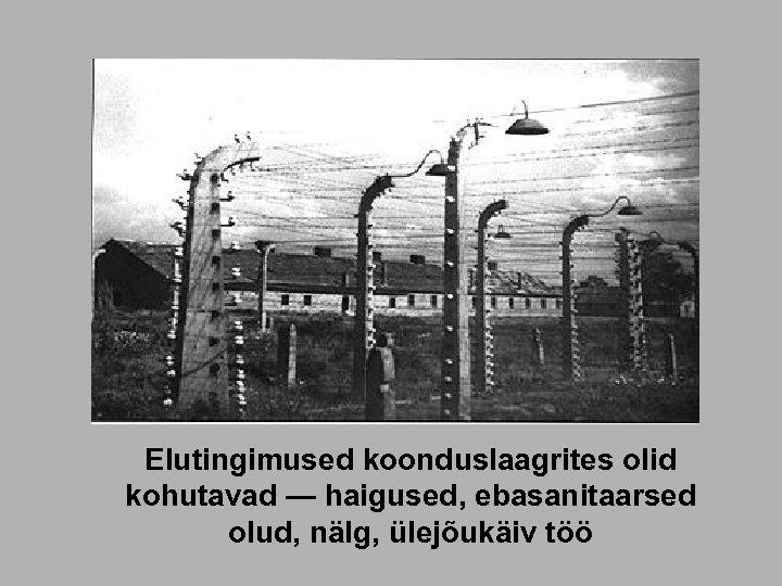 Elutingimused koonduslaagrites olid kohutavad — haigused, ebasanitaarsed olud, nälg, ülejõukäiv töö
