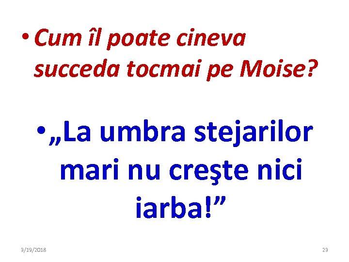"""• Cum îl poate cineva succeda tocmai pe Moise? • """"La umbra stejarilor"""