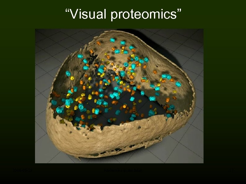 """Visual proteomics"" 2008 -05 -28 Molecules in the Mist 17"