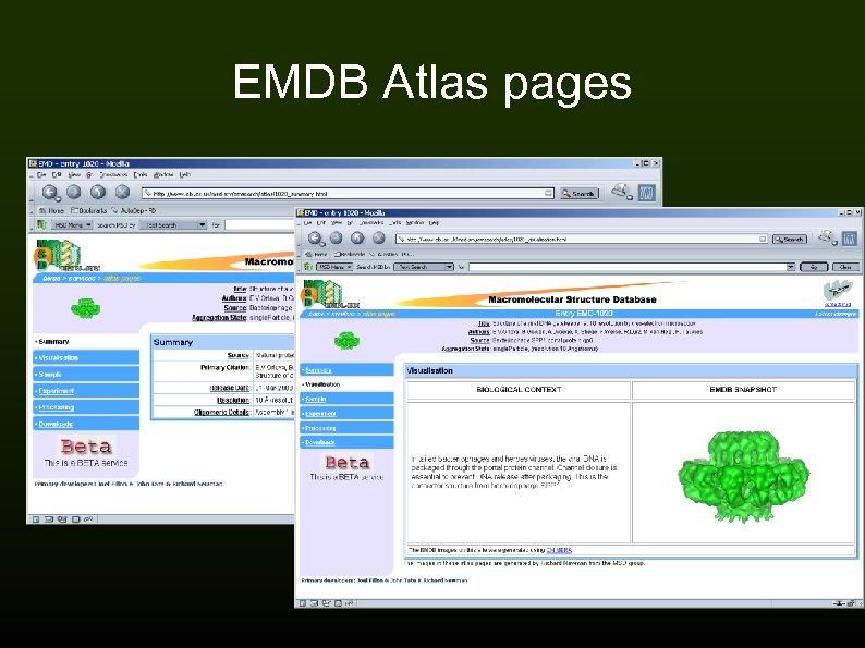 EMDB Atlas pages