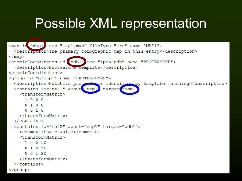 Possible XML representation