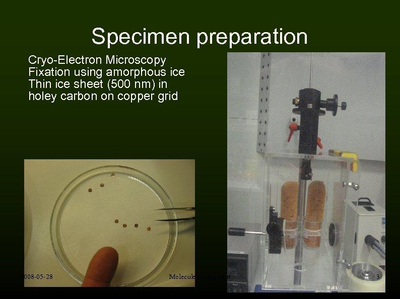 Specimen preparation Cryo-Electron Microscopy Fixation using amorphous ice Thin ice sheet (500 nm) in