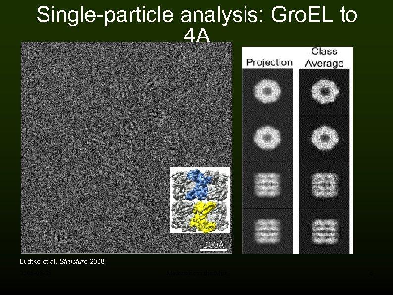 Single-particle analysis: Gro. EL to 4 A Ludtke et al, Structure 2008 -05 -28