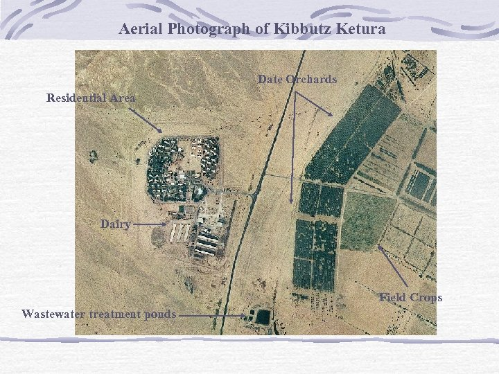 Aerial Photograph of Kibbutz Ketura Date Orchards Residential Area Dairy Field Crops Wastewater treatment