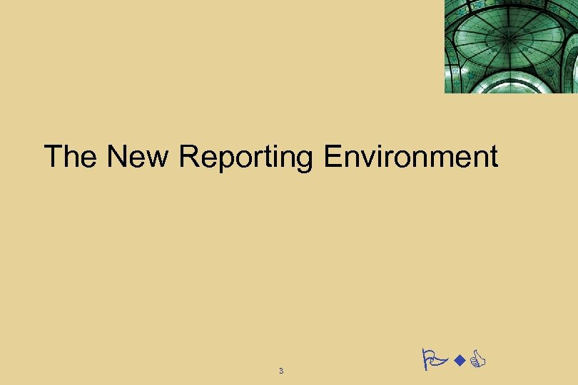 The New Reporting Environment 3 Pw. C