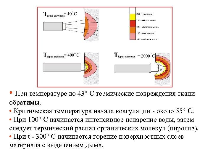 • При температуре до 43° С термические повреждения ткани обратимы. • Критическая температура