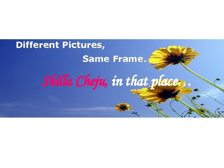 Different Pictures, Same Frame. Shilla Cheju, in that place…