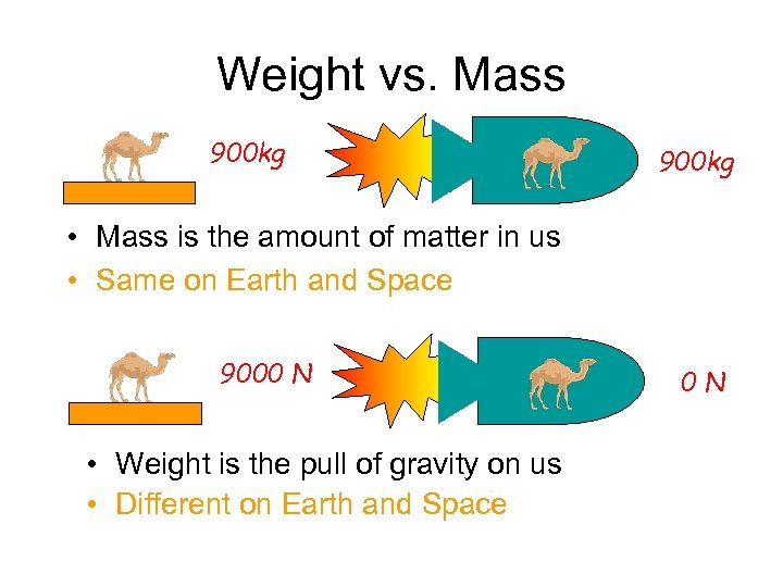 Weight vs. Mass 900 kg • Mass is the amount of matter in us