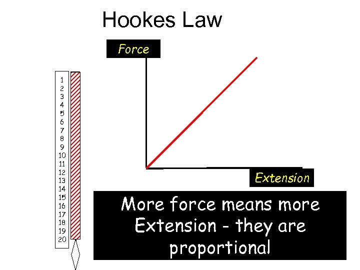 Hookes Law Force 1 2 3 4 5 6 7 8 9 10 11