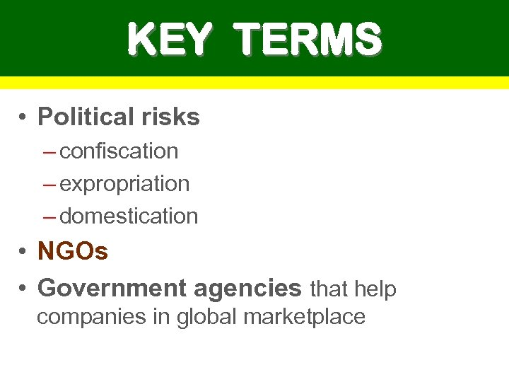 KEY TERMS • Political risks – confiscation – expropriation – domestication • NGOs •