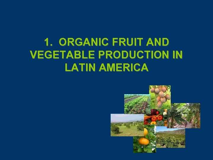 1. ORGANIC FRUIT AND VEGETABLE PRODUCTION IN LATIN AMERICA