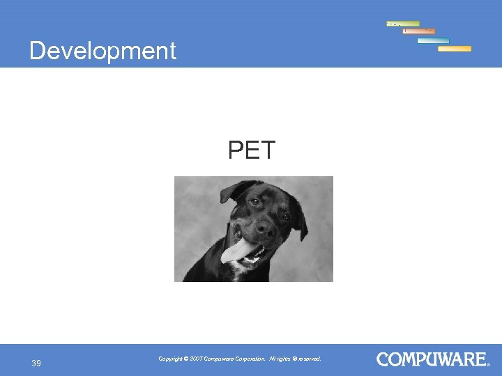 Development Privacy Enabling Technology (PET) 39 Copyright © 2007 Compuware Corporation. All rights ®