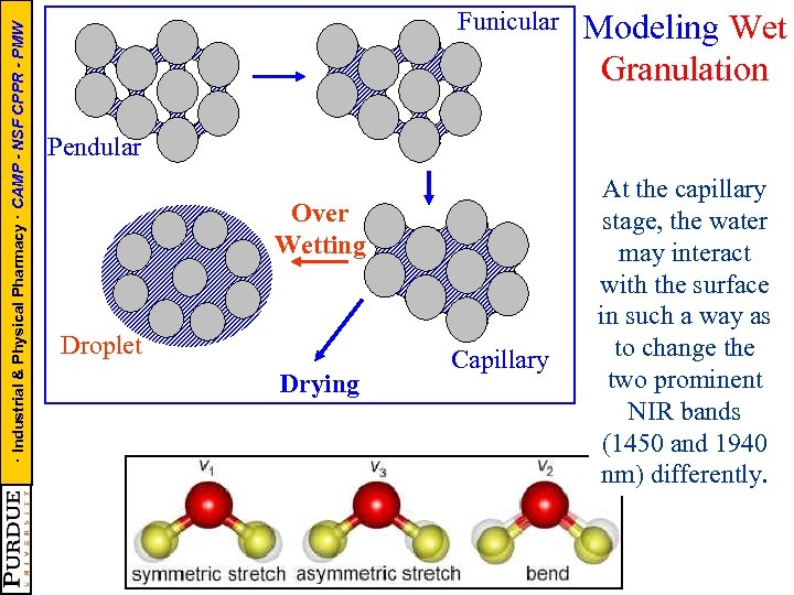 · Industrial & Physical Pharmacy · CAMP - NSF CPPR - PMW Funicular Modeling