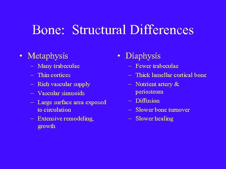 Bone: Structural Differences • Metaphysis – – – Many trabeculae Thin cortices Rich vascular