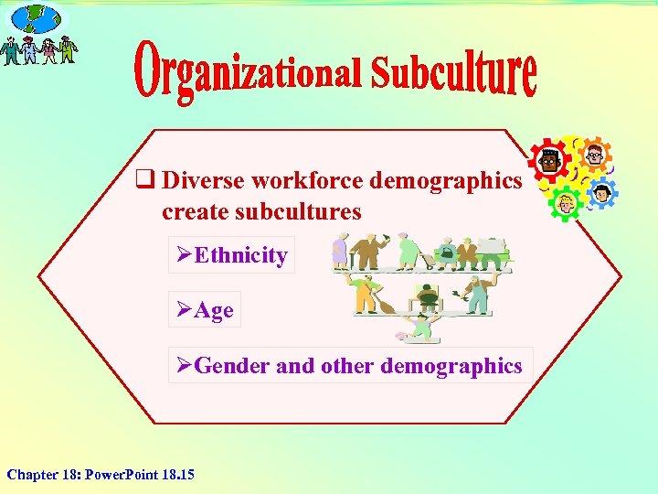 q Diverse workforce demographics create subcultures ØEthnicity ØAge ØGender and other demographics Chapter 18:
