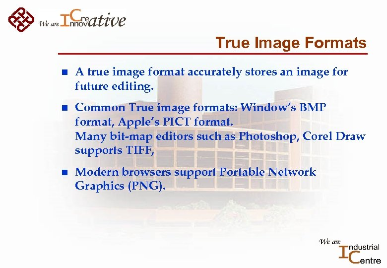 True Image Formats n A true image format accurately stores an image for future