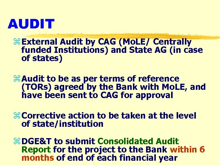 AUDIT z External Audit by CAG (Mo. LE/ Centrally funded Institutions) and State AG