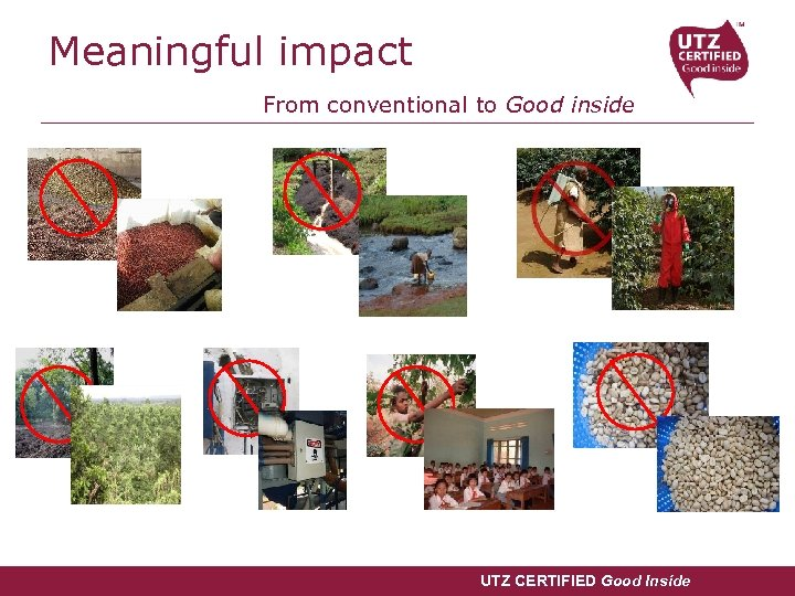Meaningful impact From conventional to Good inside UTZ CERTIFIED Good Inside