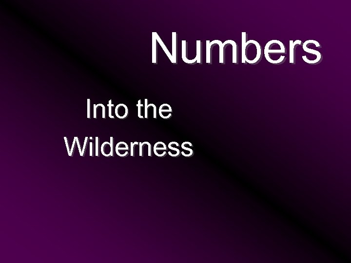 Numbers Into the Wilderness