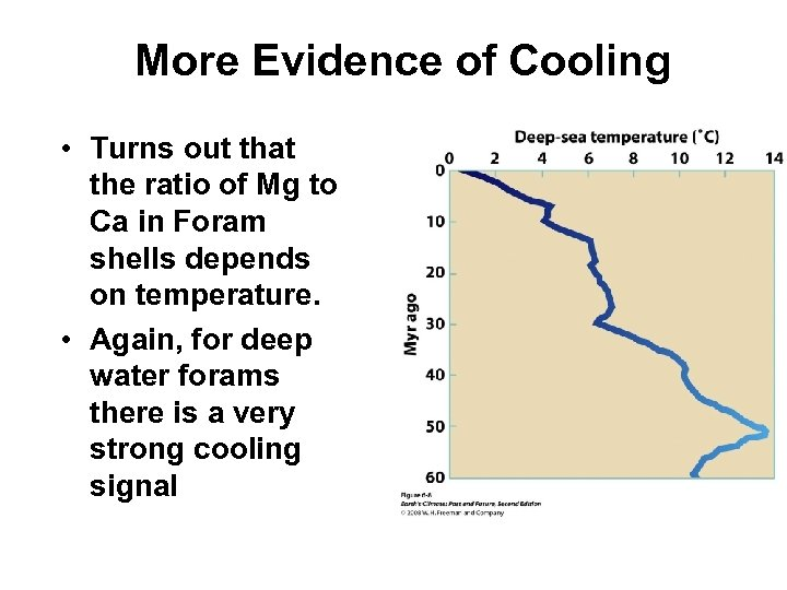 More Evidence of Cooling • Turns out that the ratio of Mg to Ca