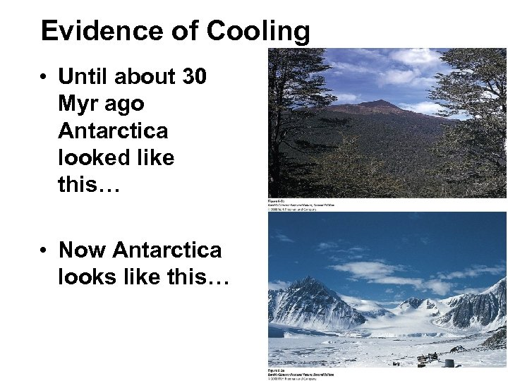 Evidence of Cooling • Until about 30 Myr ago Antarctica looked like this… •