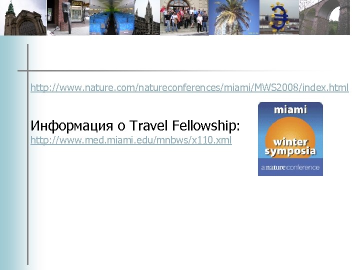 http: //www. nature. com/natureconferences/miami/MWS 2008/index. html Информация о Travel Fellowship: http: //www. med. miami.