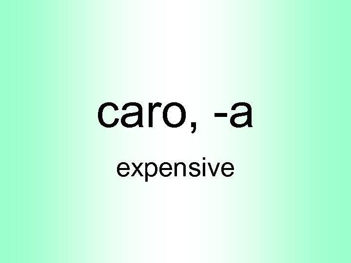 caro, -a expensive