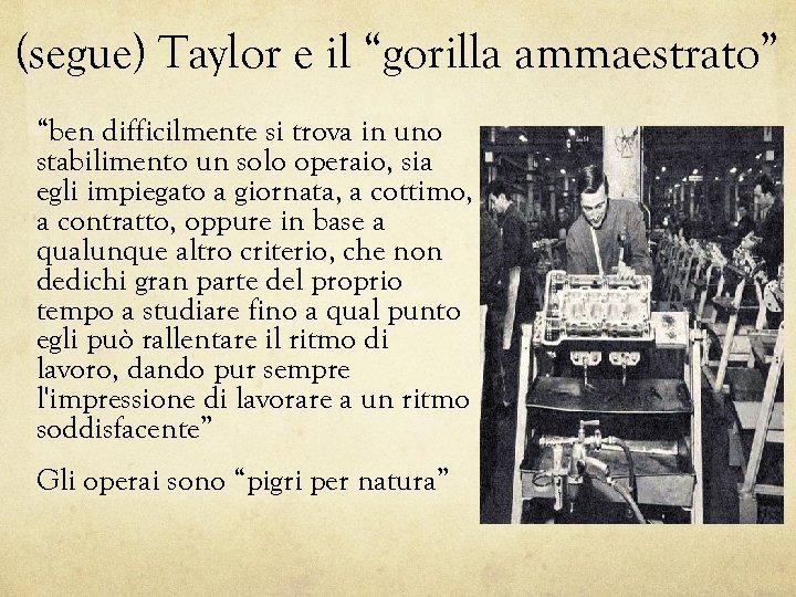 """(segue) Taylor e il """"gorilla ammaestrato"""" """"ben difficilmente si trova in uno stabilimento un"""