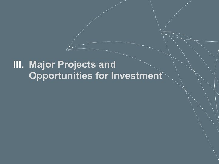 III. Major Projects and Opportunities for Investment 70