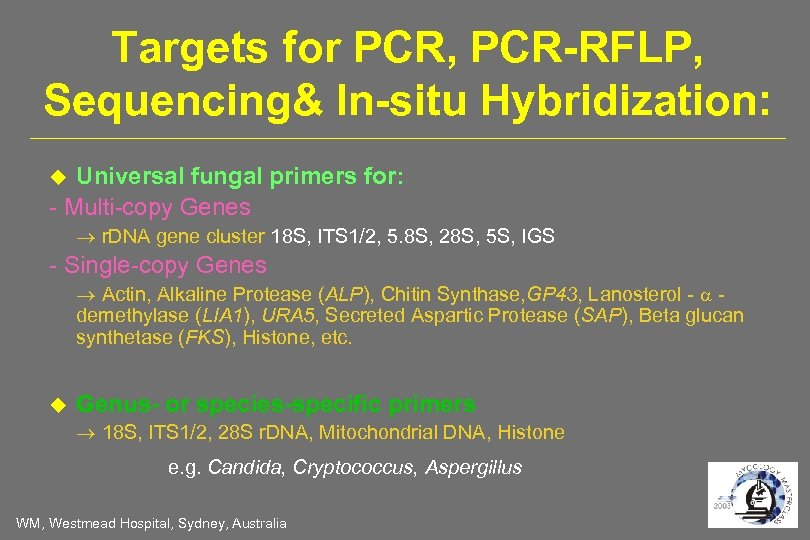 Targets for PCR, PCR-RFLP, Sequencing& In-situ Hybridization: Universal fungal primers for: - Multi-copy Genes