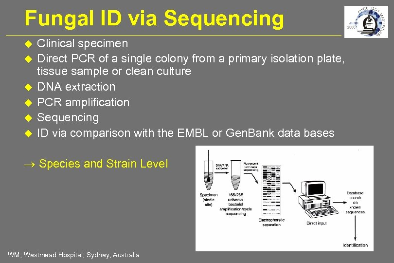 Fungal ID via Sequencing Clinical specimen Direct PCR of a single colony from a