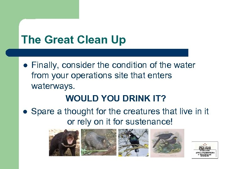 The Great Clean Up l l Finally, consider the condition of the water from