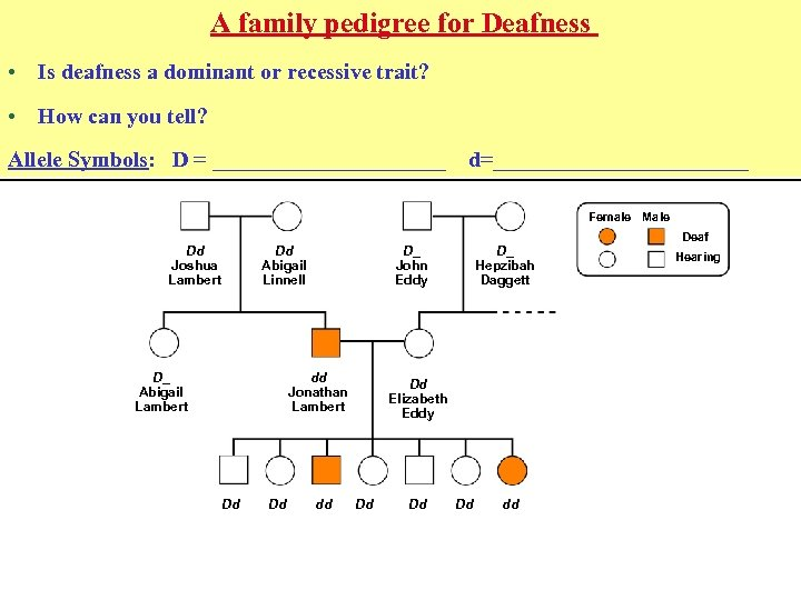 A family pedigree for Deafness • Is deafness a dominant or recessive trait? •